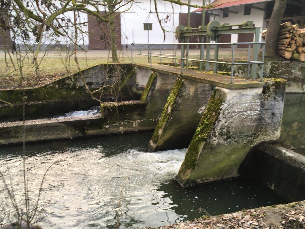 Gaewasser Fischreiverein Velden