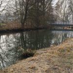 Gewaesser Fischreiverein Velden